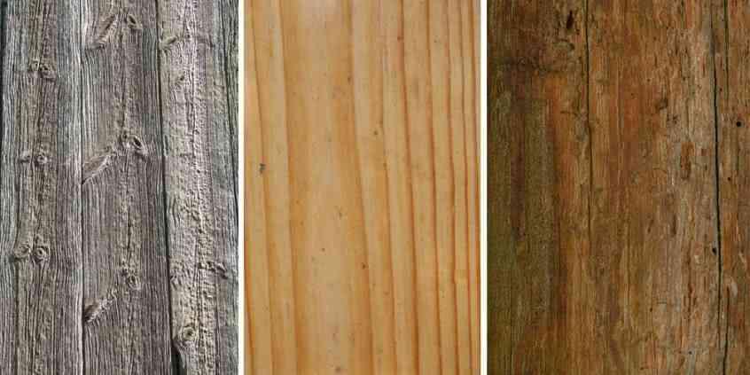 Druhy dřeva a jejich charakteristika