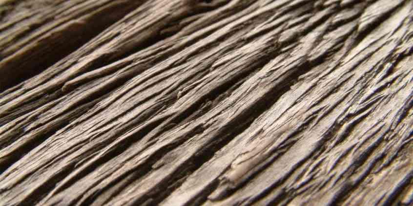 Strukturalizace dřeva