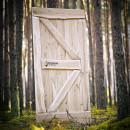 dubové dveře světlé